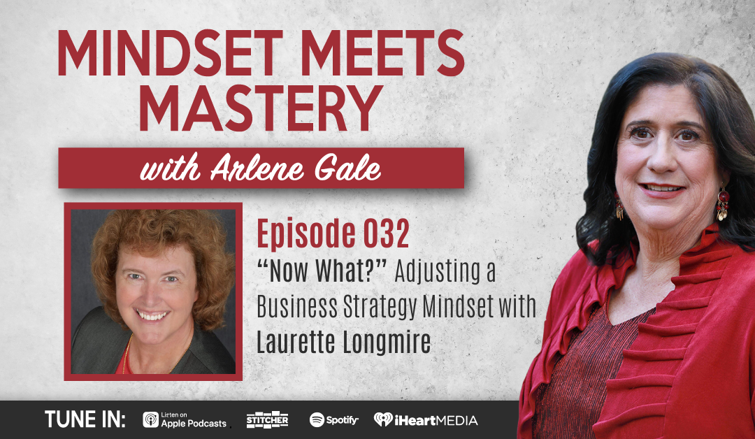 "MMM 032: ""Now What?"" Adjusting a Business Strategy Mindset with Laurette Longmire"